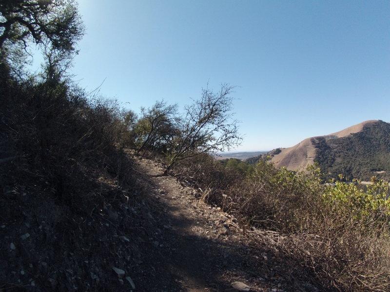 Along the Duna Vista Spur