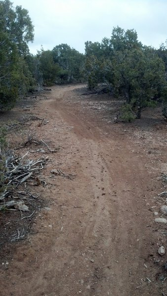 climbing up trail 34.
