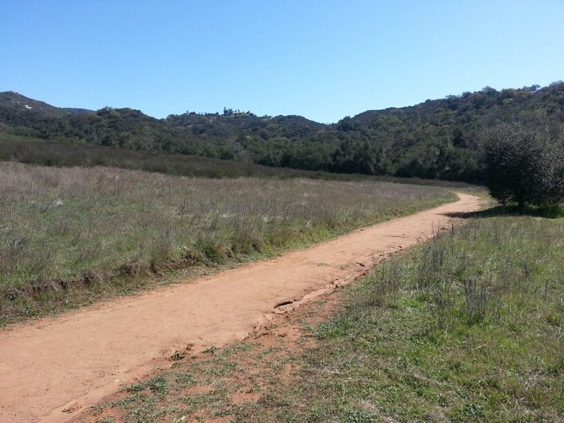 Entrance to Daley Ranch Trail from Cougar Pass Rd