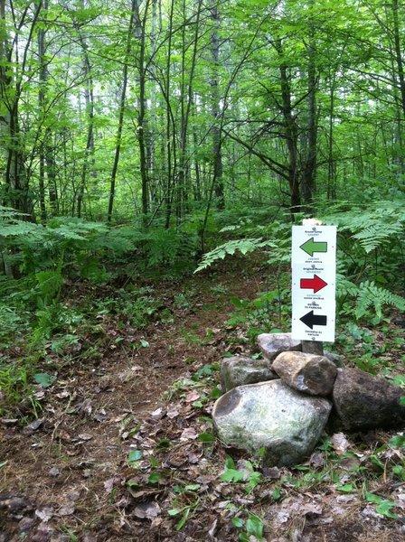 short cut to skip Wagon Wheel Ridge