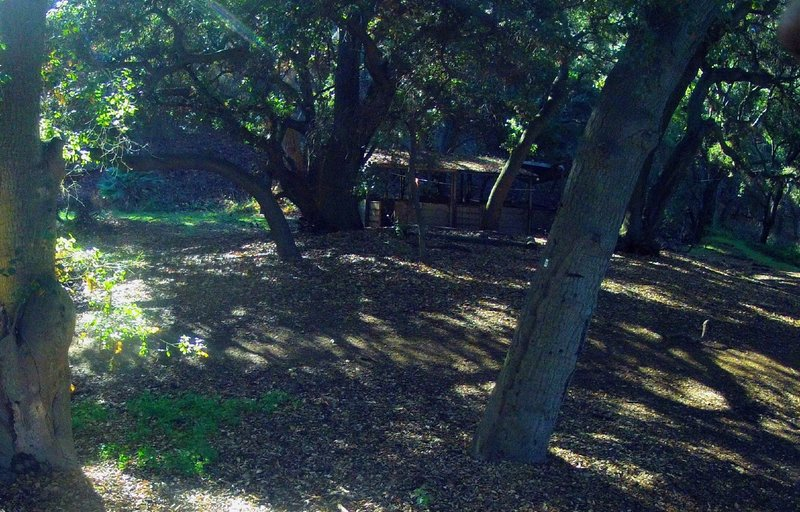 Next to a water break spot, the stable in a shaded hollow.