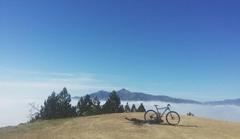 Above the clouds at the Prewitt ridge summit
