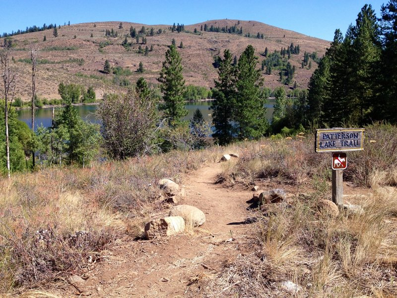 Trail intersection of Patterson Lake Tr., Cabin Tr. and Magpie.
