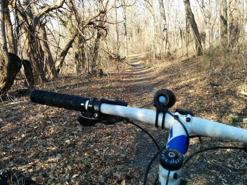 A view of the trail just north of Good Hope Rd SE.