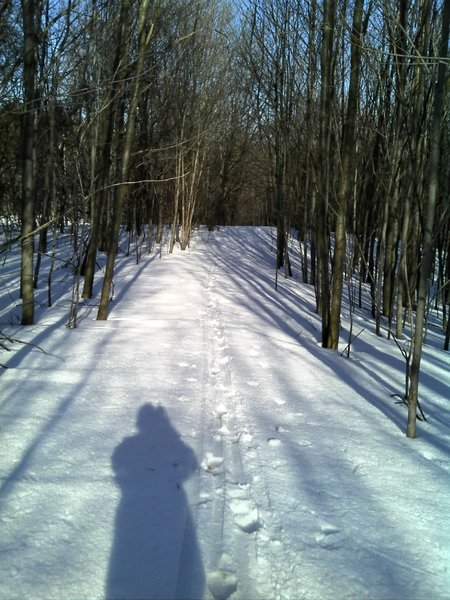 Snow on trails at Gannett Hill March 31, 2014.  Still a few weeks until the trials are ready for biking.