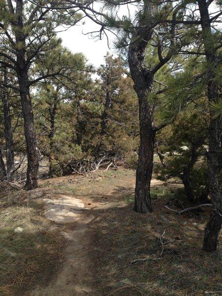 Slide loop trail