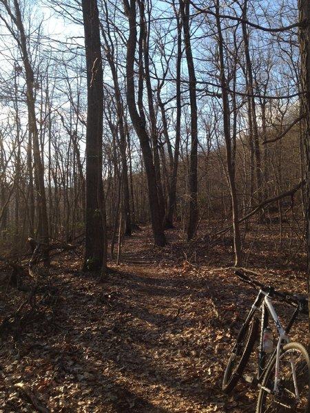 White Trail SingleTrack.