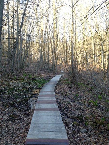 Boardwalks going toward the Upper Glen trail