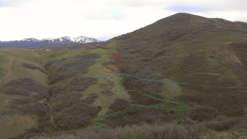 Blue: wild rose loop<br> Red: Wild rose upper D.H.-1<br> Green: Wild rose upper D.H. -2 (there are some more tuns in there that are hidden by trees)