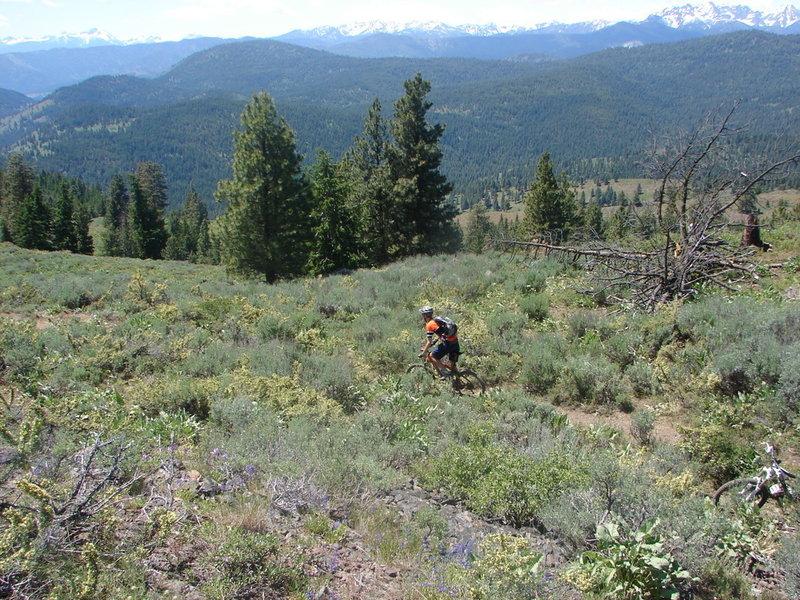Buck Mountain Trail