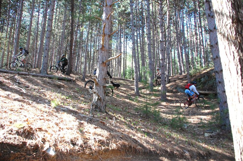 Riders desending Twistted Pine switchbacks.  Wilmington Wild Forest Beaver Brook Tract, Hardy Road, Wilmington, NY