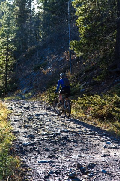 Late October ride on the Powderface Creek trail.