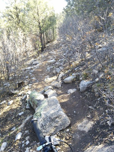 The trail is steep but has good switchbacks.