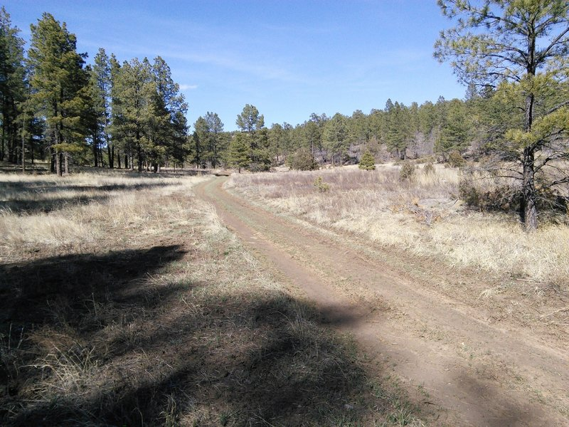 The trail crosses David Canyon and FR106 which is a bailout option