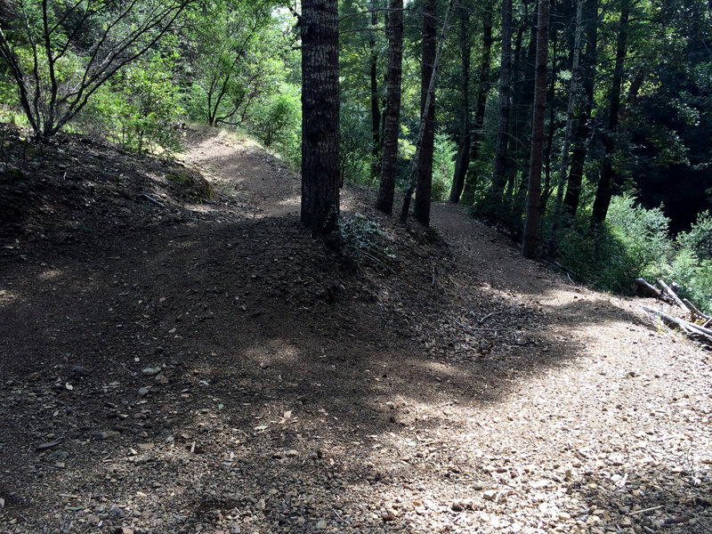 A lot of work has been done on these trails, and they are a delight.