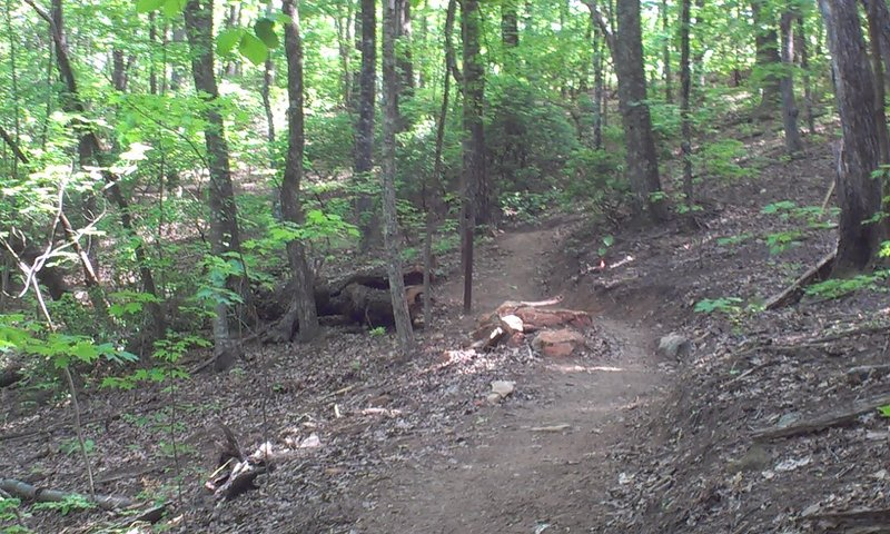 Embedded rock pile in trail.