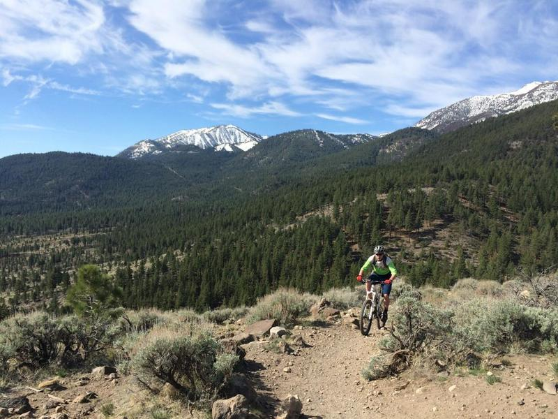 Cresting the ridge between Jones Creek and Whites Creek drainages, with Mt Rose ski resort and Mt Rose proper in the background.