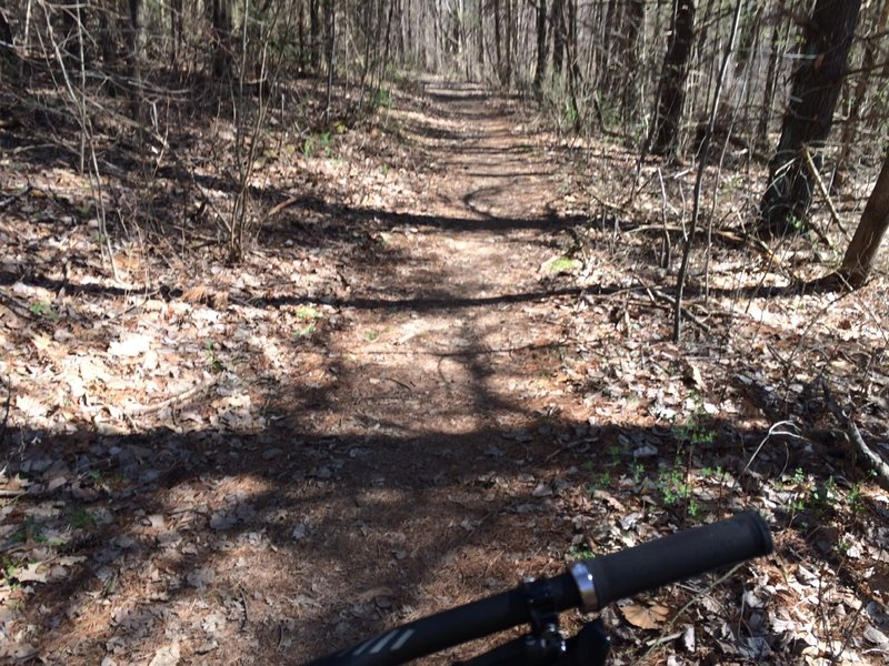 Shot of wide trail on blue loop trail.