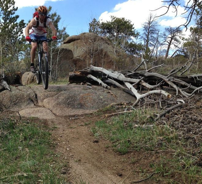 Letting it fly a bit on this mellow but fun section of trail.