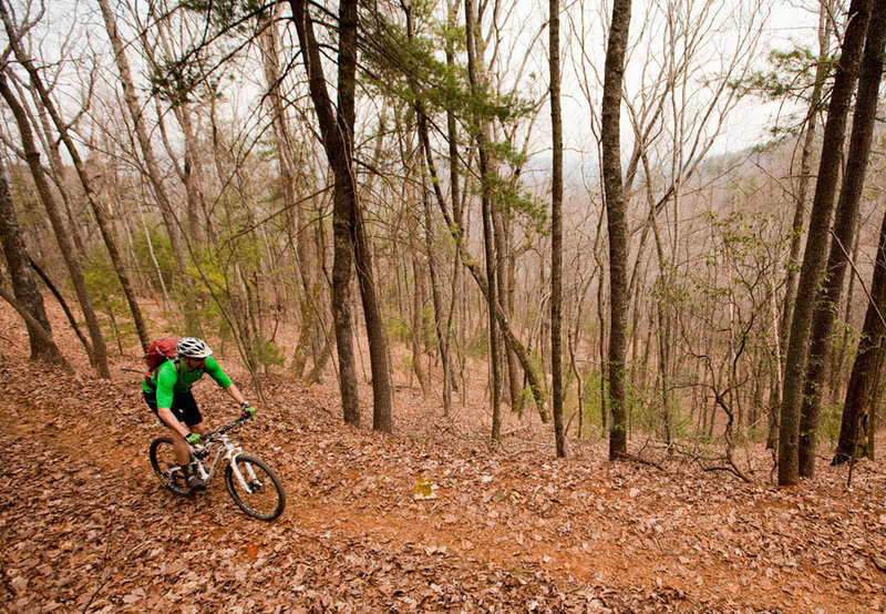 Descending the Bull Mountain trail - a great way to finish the Bull-Jake Mountain IMBA Epic.