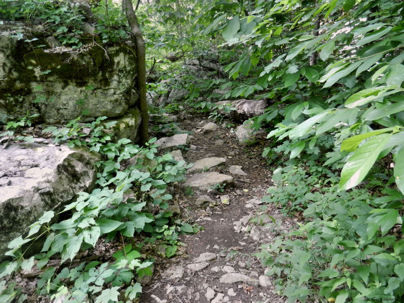 The trail can be highly technical in spots.