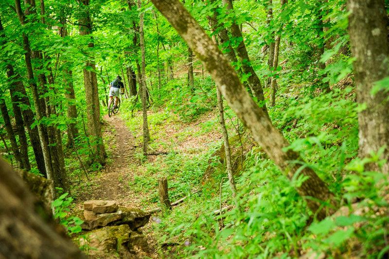 Running the ridge on Spellbound