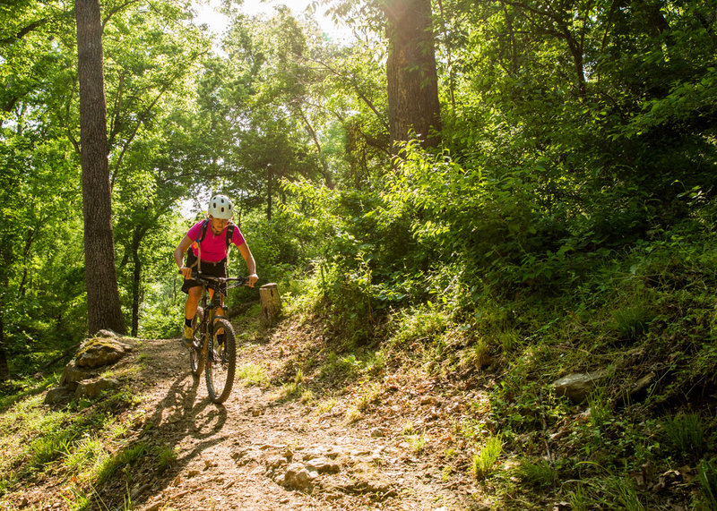 Park Spring Loop is a great place for beginners or a quick ride