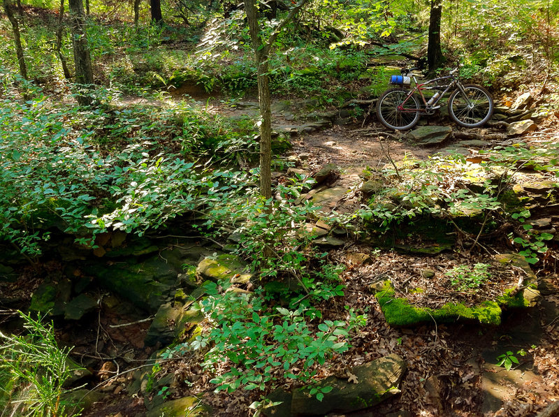Traversing one of many rocky ravines on the SW Blue Trail at Lake McMurtry in Stillwater, OK.