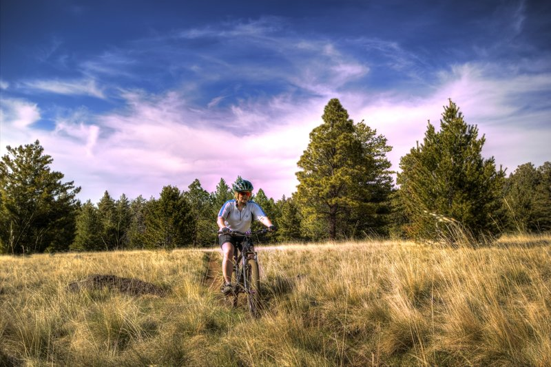 Riding the open meadow