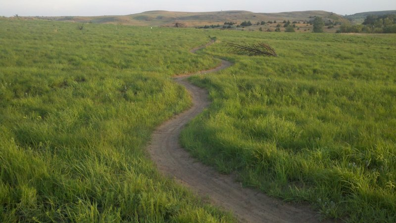 A segment of the EZ, aka novice loop. It is a 5.5 mi loop that begins and ends at the trailhead.