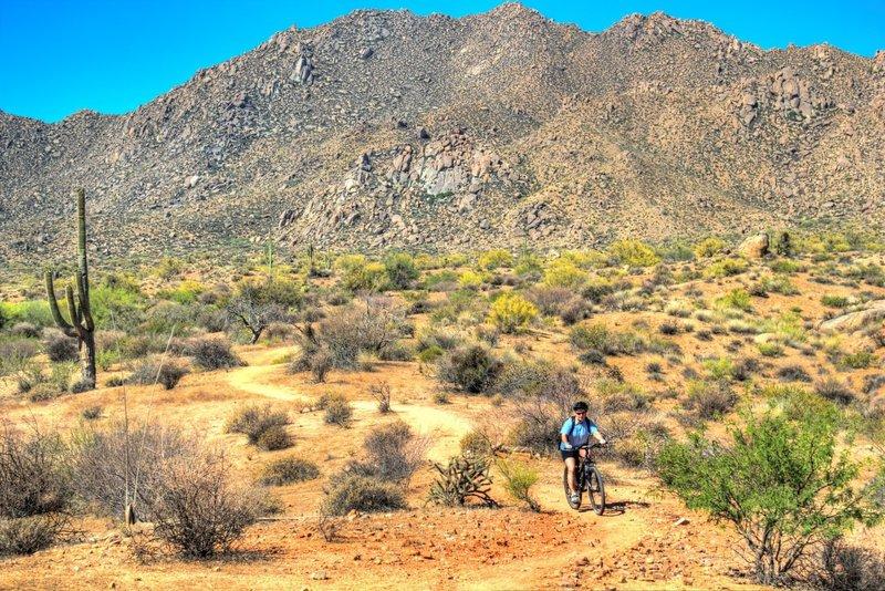Cruisin' down Rock Knob Trail