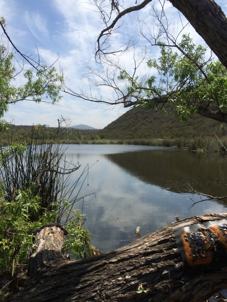 Santa Monica Ridge Lake.