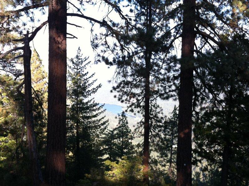 Hume Lake through the trees
