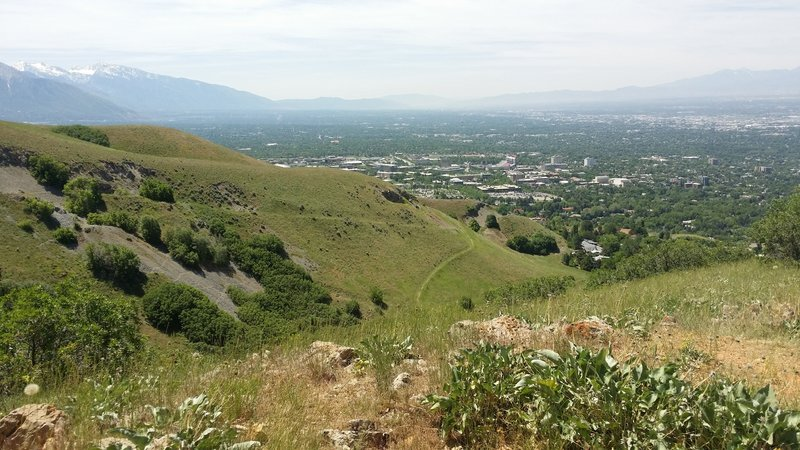 Looking at the U of Utah from Bonneville Shoreline Trail