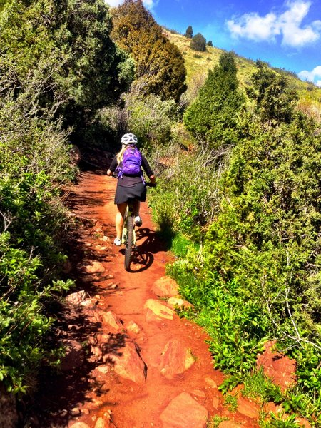 Technical, rocky climb with lots of switchbacks.