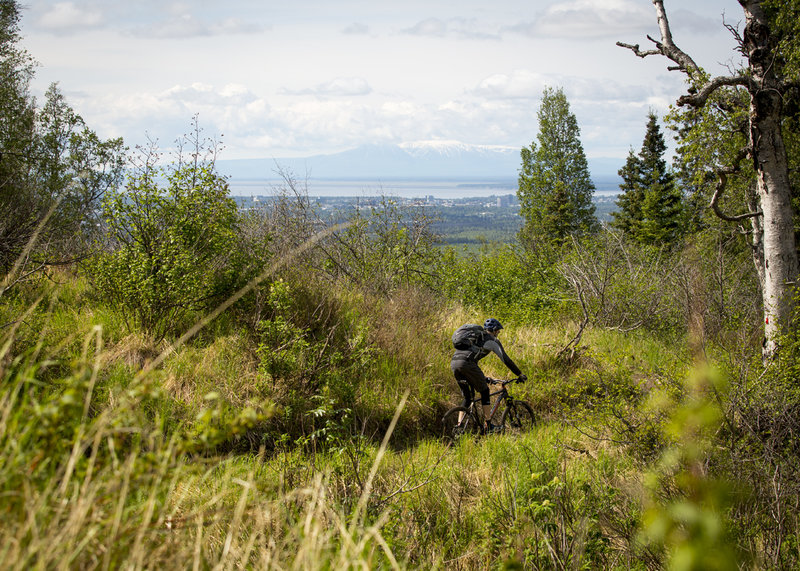 Great views of Anchorage available throughout the Hillside trail network