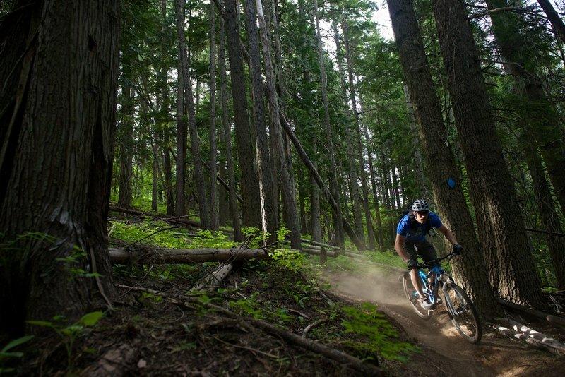 Dan during an early season run through Trail 140.