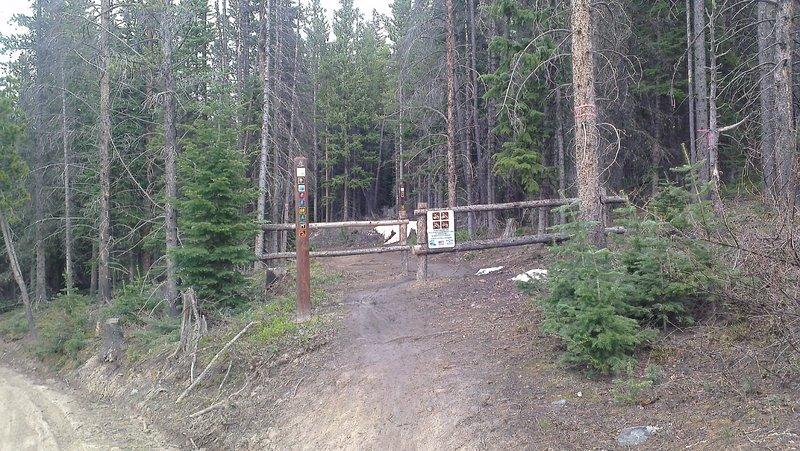 Fall Classic Trail at Gold Run Road