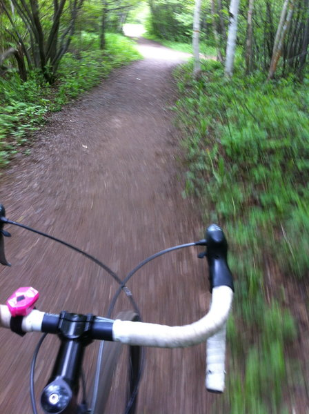 The wide, gravel, multi-use trail that accesses the singletrack from the Nature Center parking lot.
