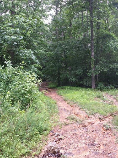 Start of OWASA Corridor trail