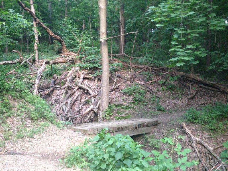 Kilbuck trail - Bridge over small stream