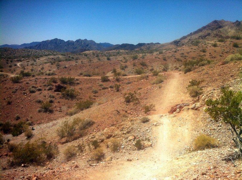 IMBA gullies and trail