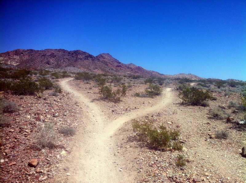 Par None Trail goes left or ride right to the gravel pit then back.