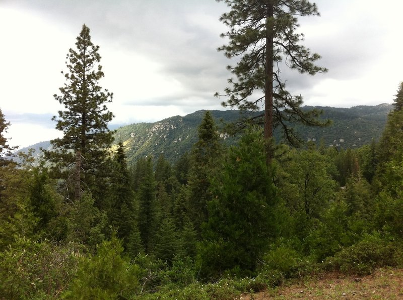 Great views looking North while climbing Abbot Creek.