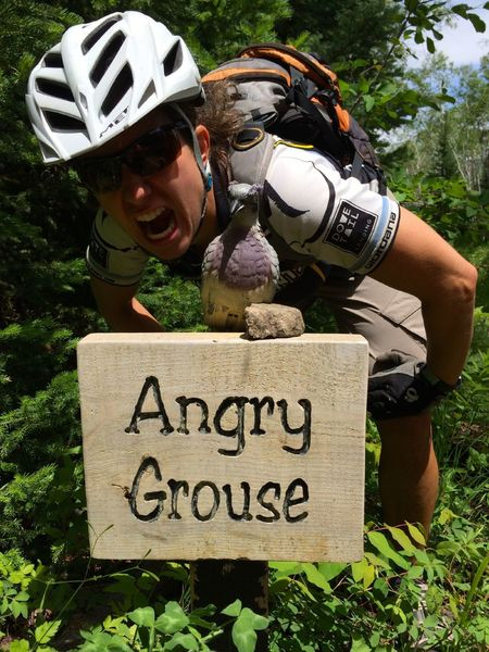Beware the Angry Grouse!