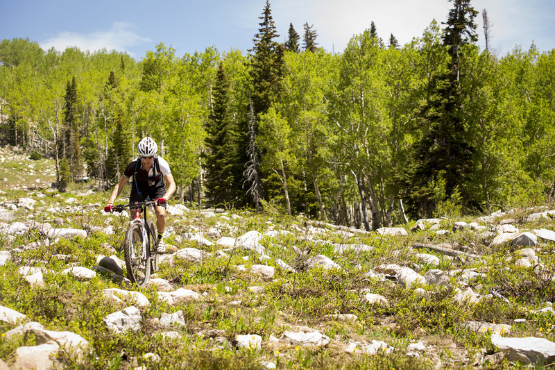 An extra rocky section on Pete's Wicked trail requires some good mountain biking skills.