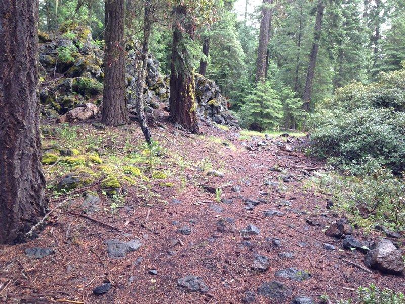 Final climb on Brown Mountain Trail before reaching High Lakes Trail