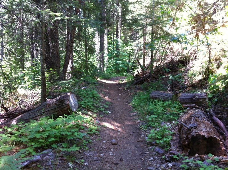 A great trail that is only going to get better!