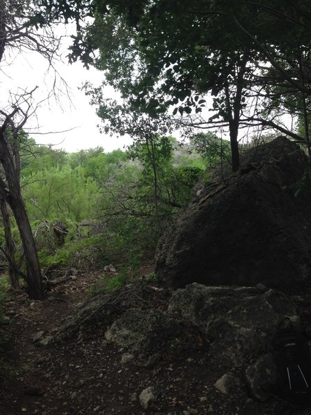 Biggest Rock on the trail.