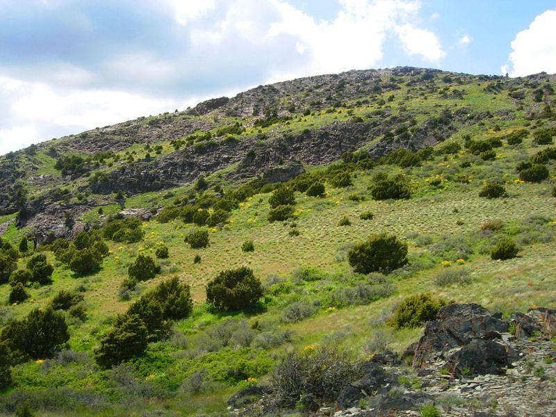 Slate Mountain.